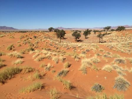 wunderschöne Landschaft im NamibRand Gebiet