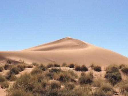 tolle Sanddünen im NamibRand Nature Reserve