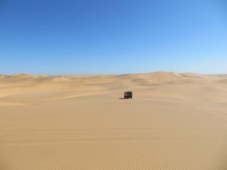 Die Fahrt durch die Dünen war sehr spaßig