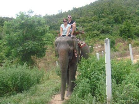 Dumbo-Riding