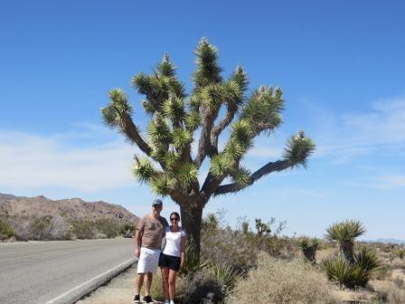 Wir und ein Joshua Tree