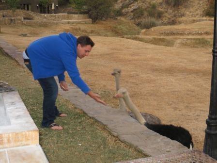 Jan bei der Vogelstraußfütterung