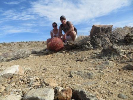 Wanderung auf dem 49Palms Oasis Trail