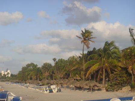 Erster Eindruck vom karibischen Strand