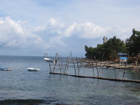 Fliegende Fischerboote im Hafen