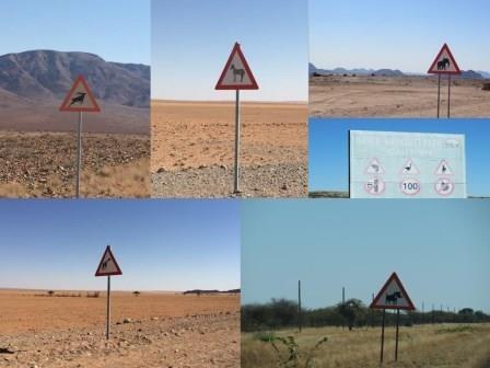 Unterwegs - vorsicht Tiere :)