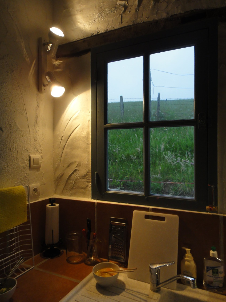 De la cuisine, la vue sur la prairie et la colline