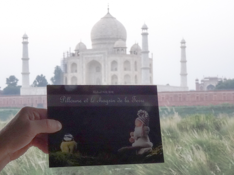 Pilloune en Inde devant le Taj Mahal