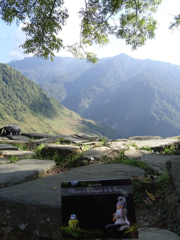 Pilloune et les rizières népalaises