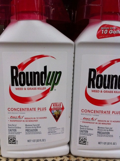 Which is better?  Expensive Roundup? or