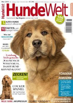 Erziehungsratgeber Hund Welpe Familienhund