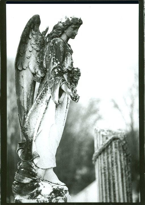 Angel Overseer