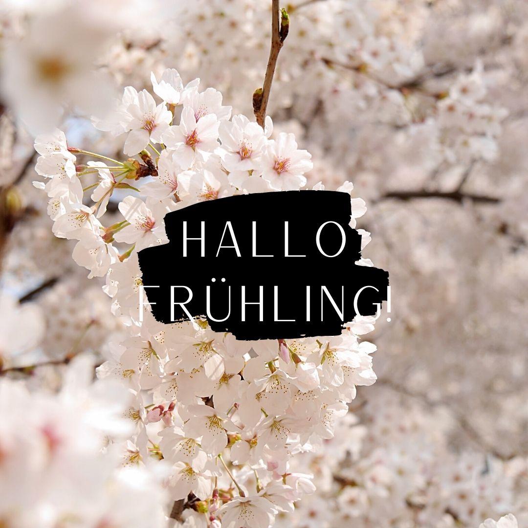 Hallo, Frühling!