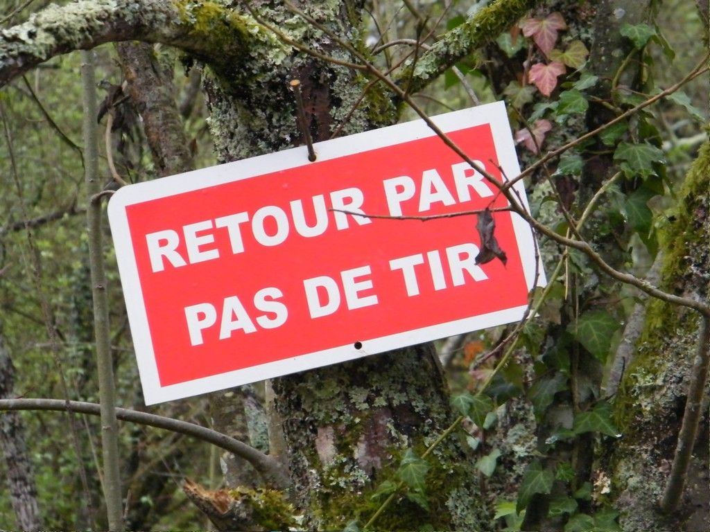 - copyright Laurent GUILLOU  PUMA-ARC