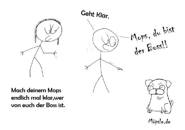Mops Gassi
