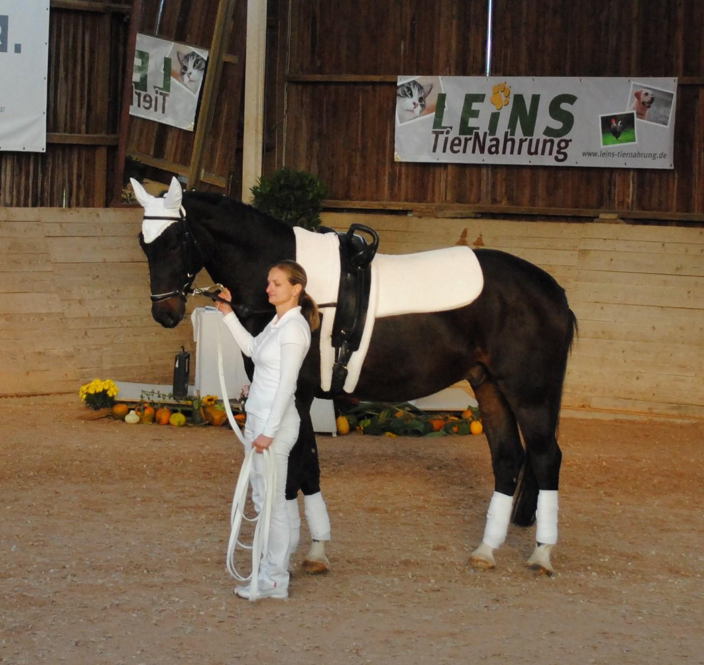 Erster L-Start 2011 - Auszeichnung als bestes Pferd