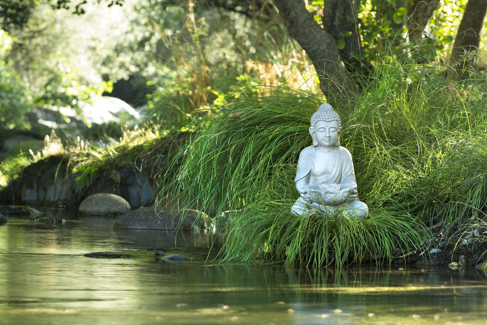 Les bienfaits sur le cerveau de la méditation
