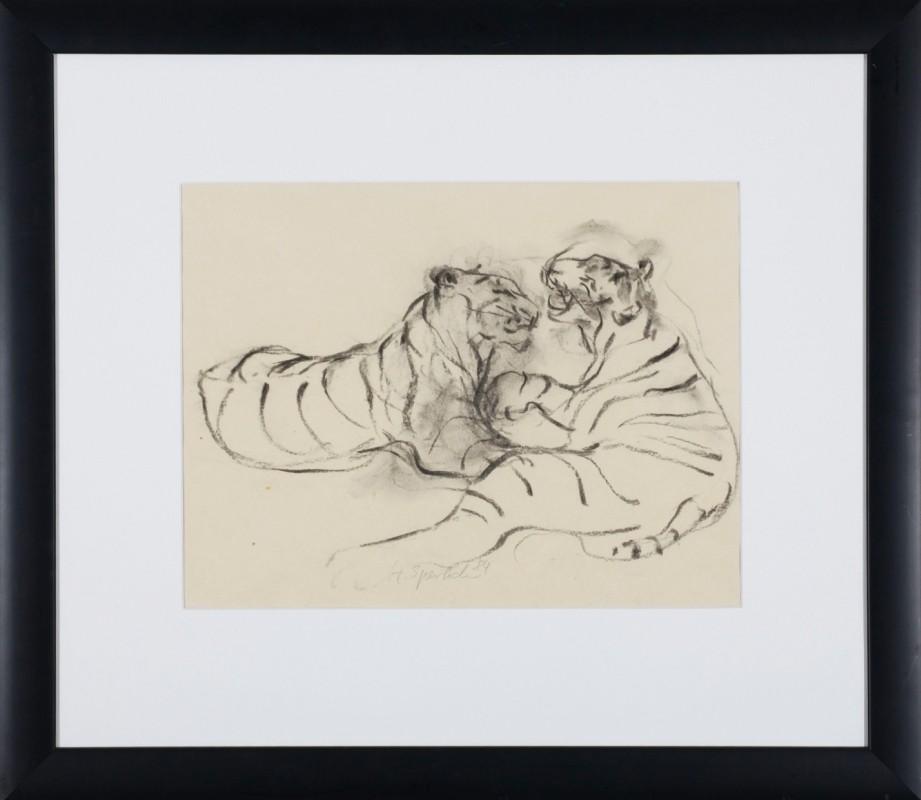 Tiger, Zeichnung, 30,5 cm x 39 cm