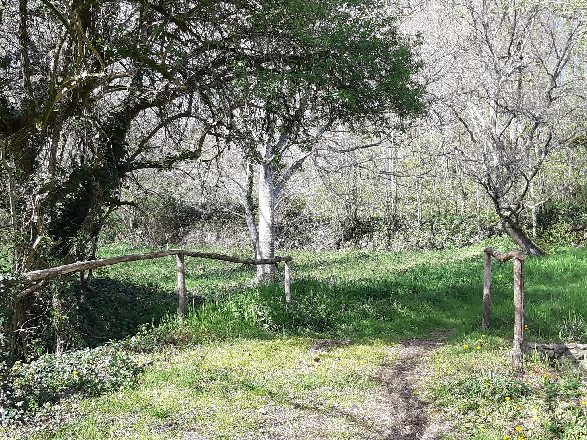Petite randonnée (dans un rayon d'un kilomètre bien sûr ;) )
