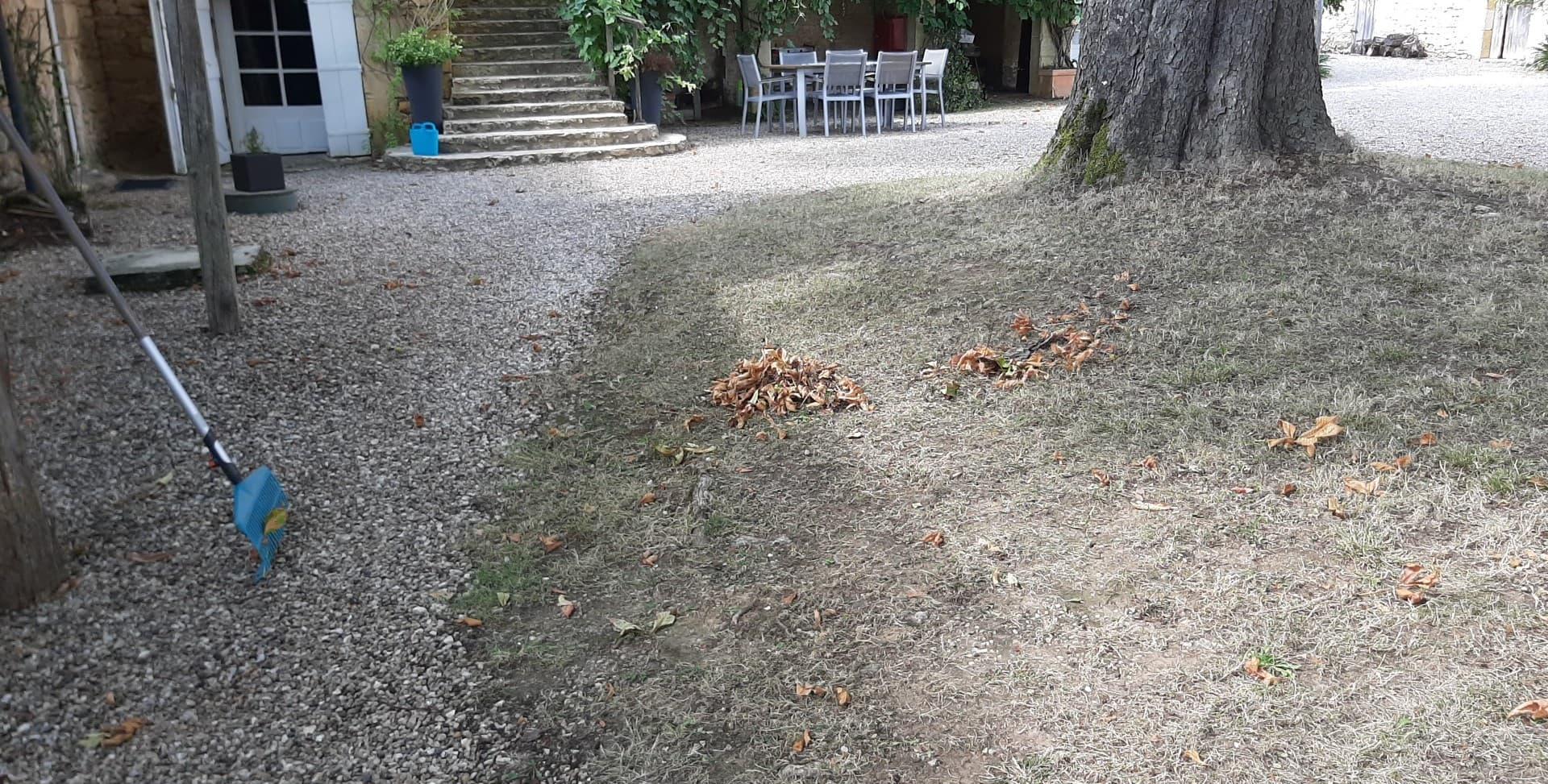 Le ramassage de feuilles...