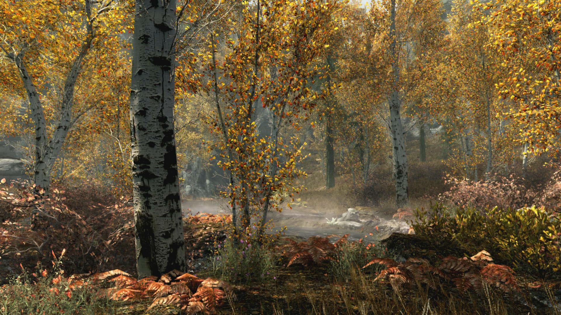 """Ein zeitloser Rollenspielklassiker wird verschönert: """"The Elder Scrolls 5: Skyrim"""" als knackscharfe HD-Special-Edition mit extra-üppigem Pflanzenbewuchs. (28.10. fürD PS4, XBO)"""