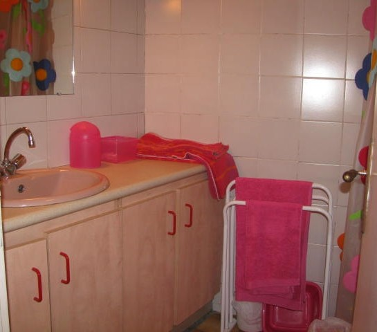 La salle d'eau avec douche au RDC