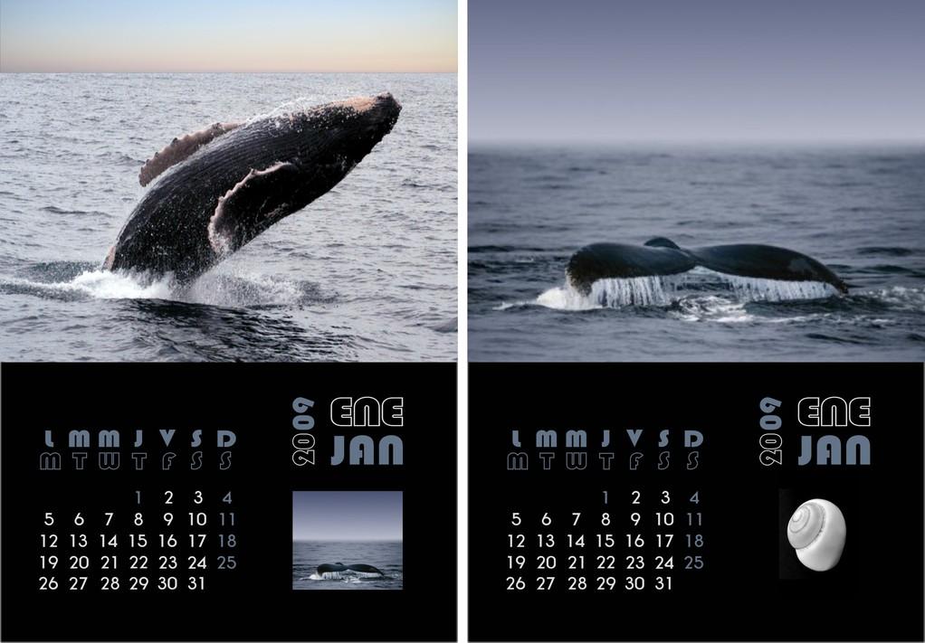 Ejemplos de Interior de calendario personalizado
