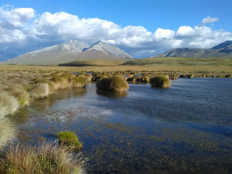 Nice view close before Rangitata River