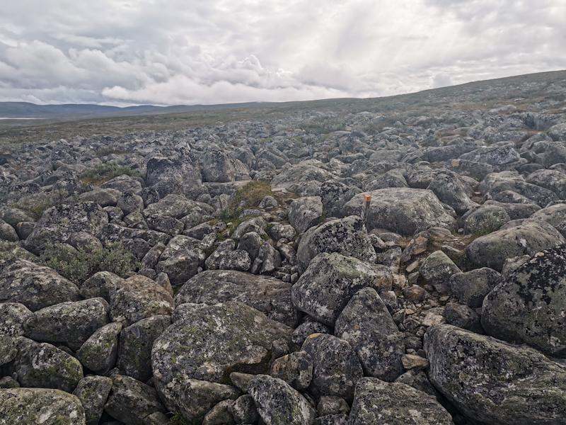 Rock field...