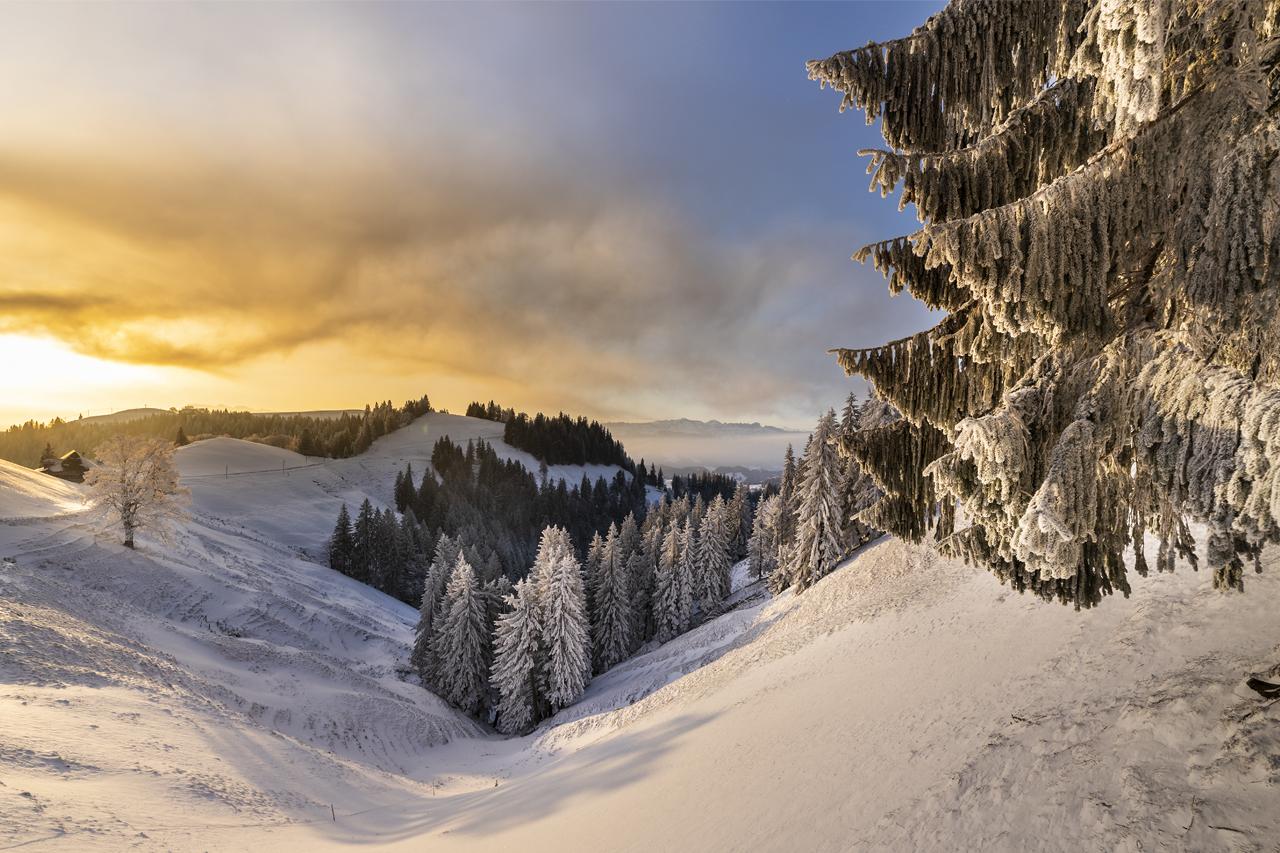 Stächelegg, Switzerland (A54)