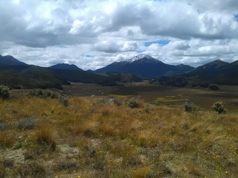 Tussock parts offering some good views