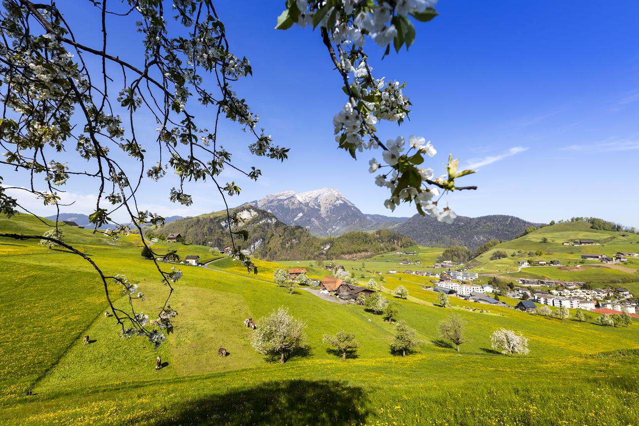 Innerschweiz (A52)