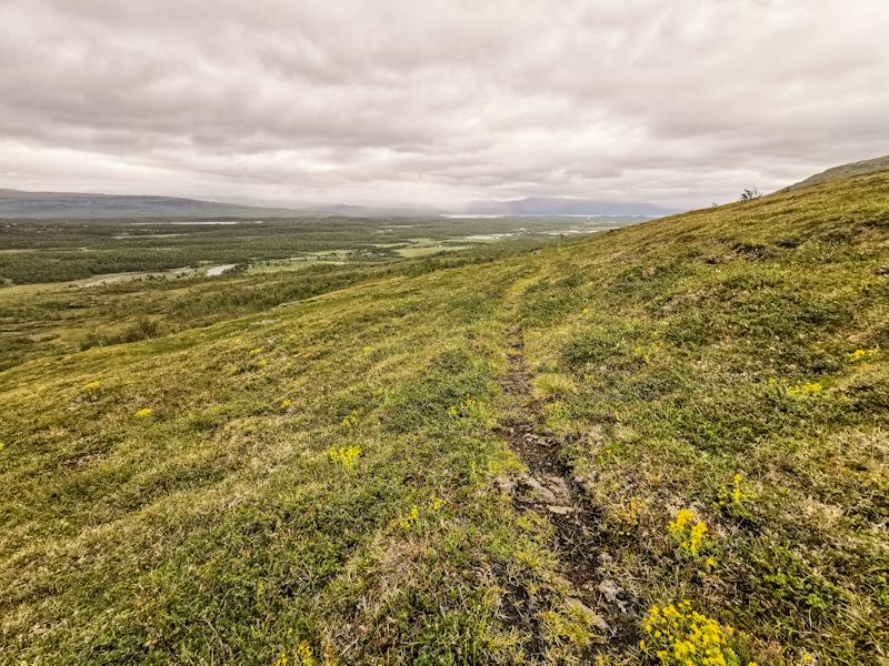 Flatter landscape ahead