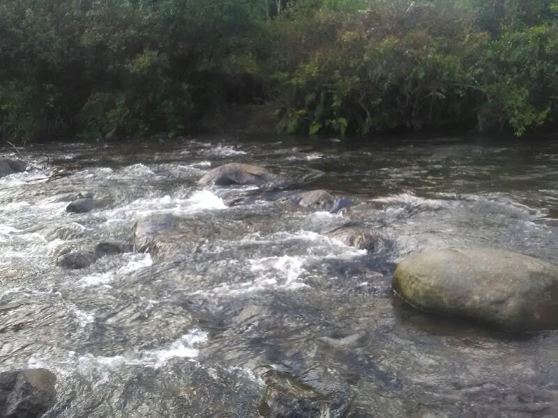 Mangatepopo River