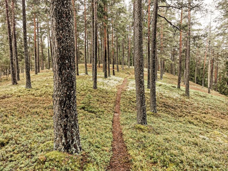 Wonderful hiking