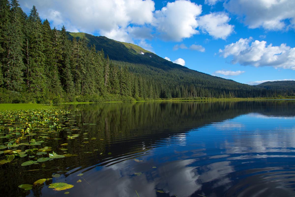 Windfall Lake, Alaska, USA