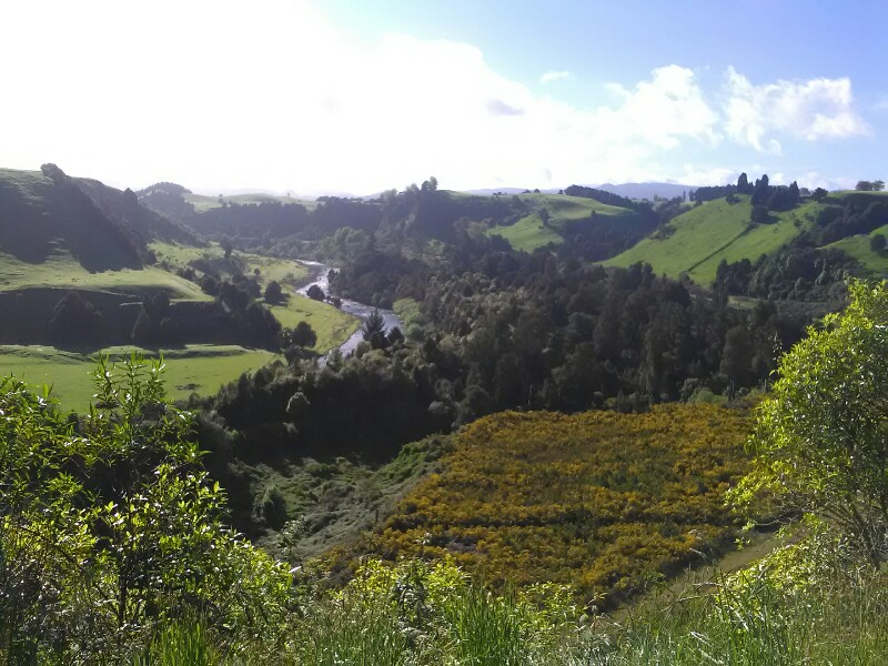 On the way to Owhango