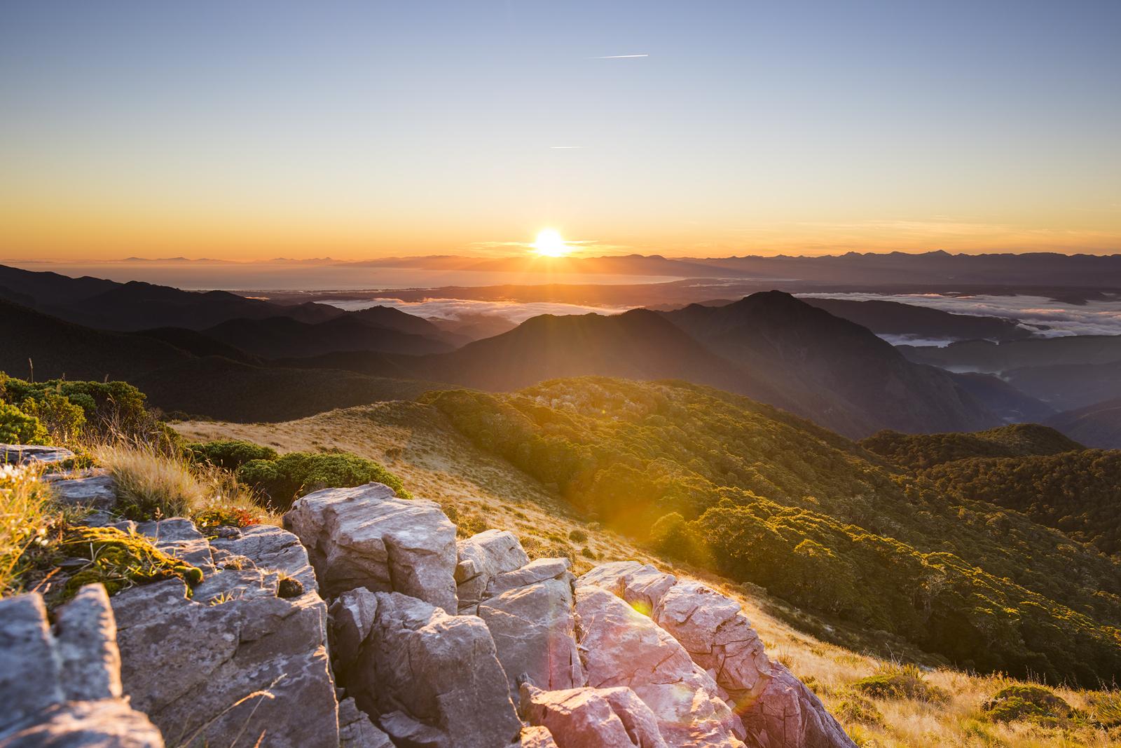 Mt Arthur, New Zealand