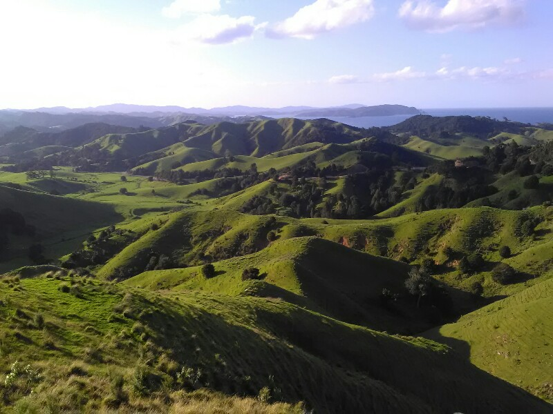 Green, greener, New Zealand