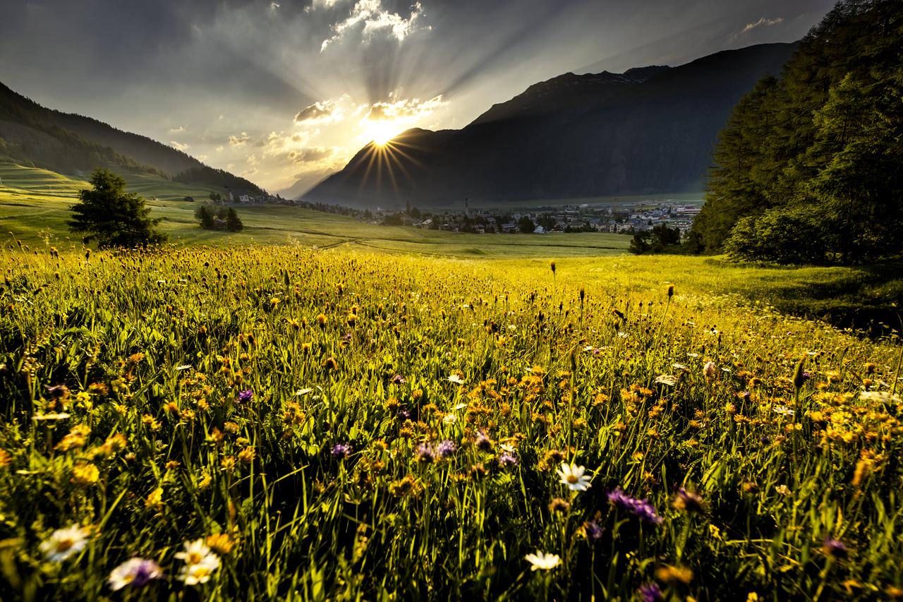 Samedan, Switzerland (A55)