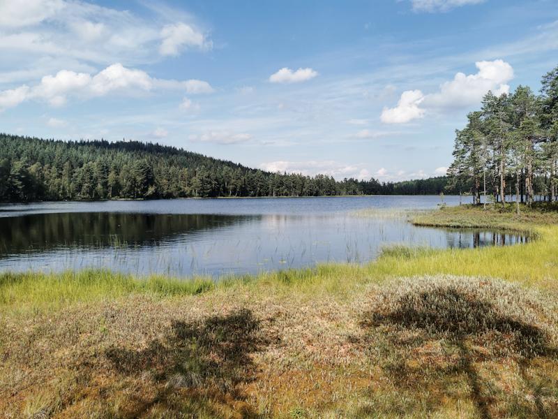 A lake!