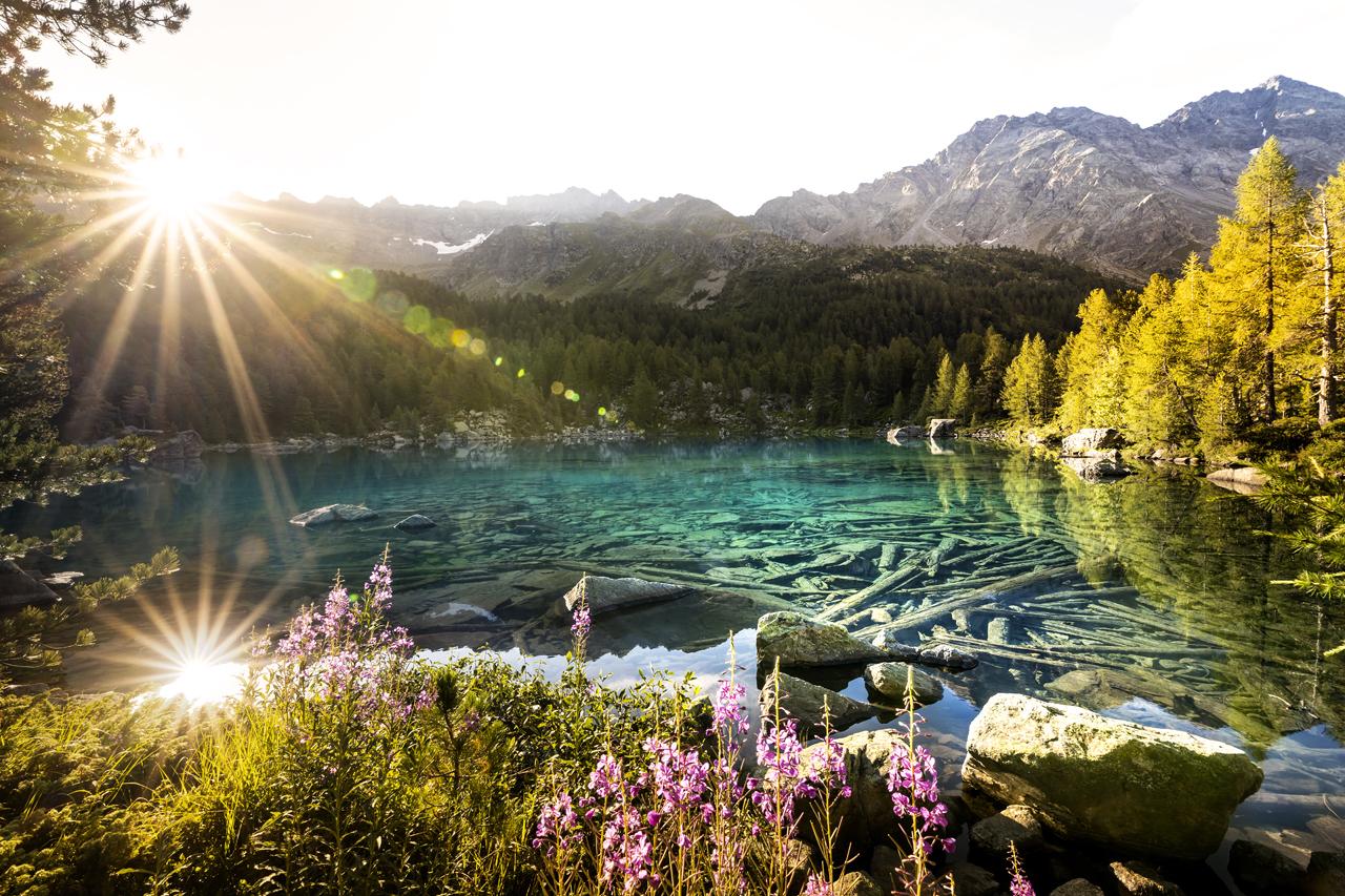 Lagh da Saoseo, Switzerland (A35)