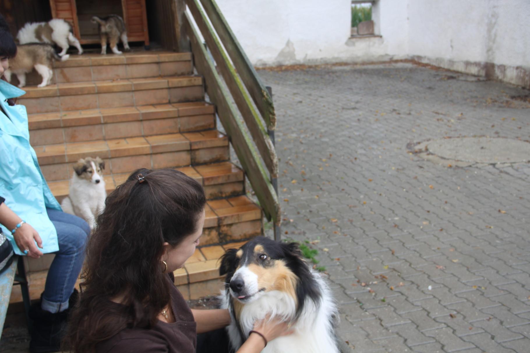 das bin ich mit Schmusepapa Comet! Er war so unglaublich lieb - dass ich ihn am liebsten auch mitgenommen hätte !