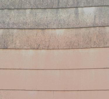 Fassadenreinigung und Algenentfernung mit hervorragender Wirkung