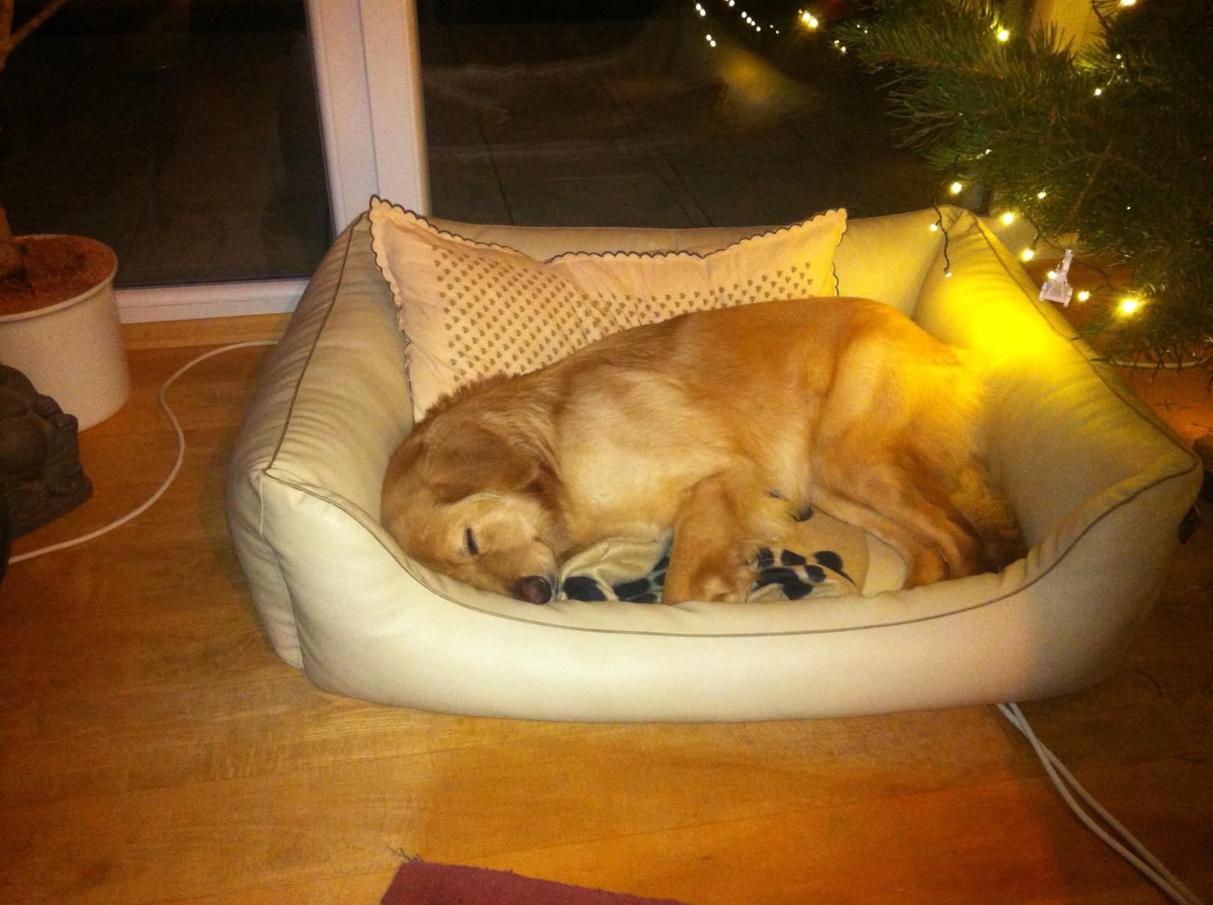 Weihnachten fast verschlafen.