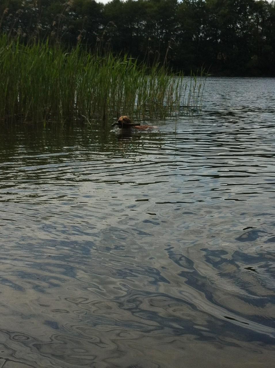 baden in der Heimat Uckermark