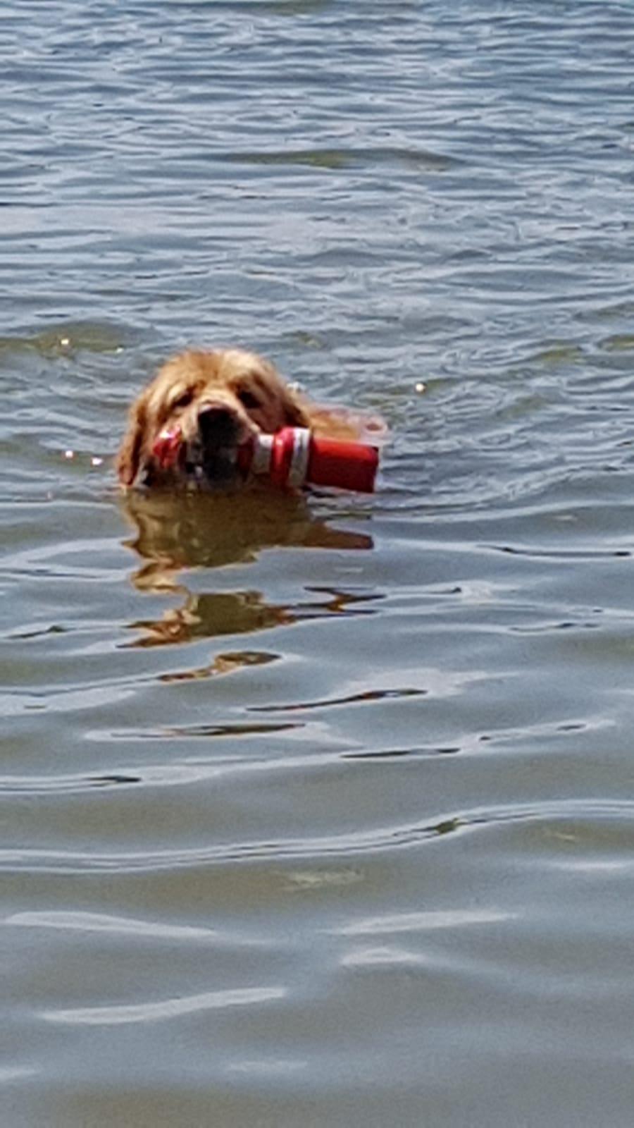 Wasser ist Sabus Element