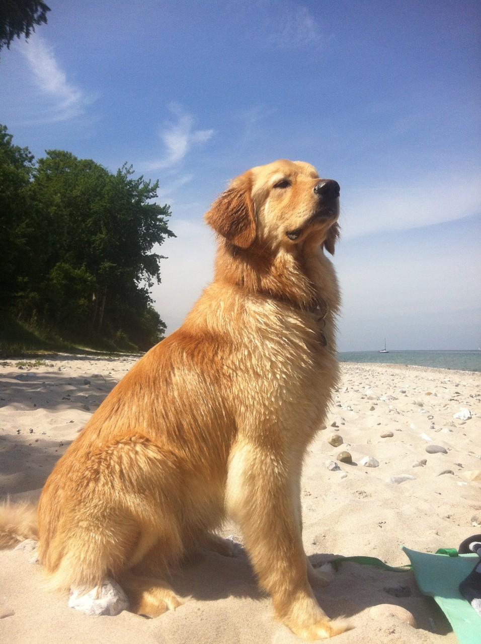 mein erster Strandurlaub an der Ostsee