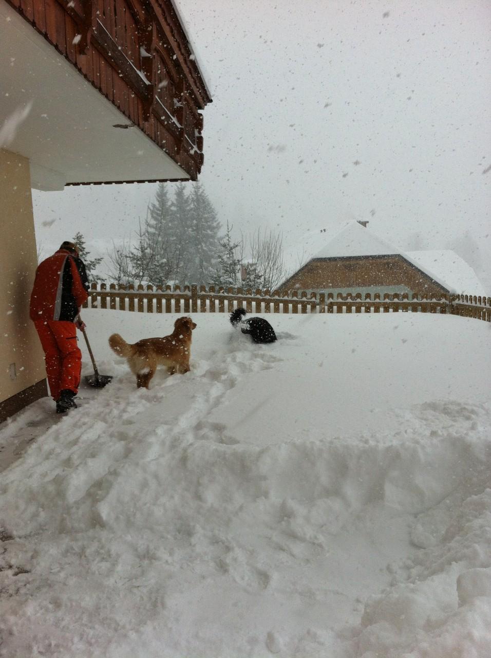 sooo viel Schnee gibts nur hier im Österreichurlaub