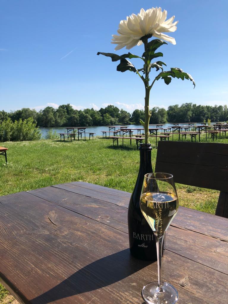 Wochenende: Rheingau, Wein und Deutsch lernen! / Weekend: Rheingau, wine and learning German!